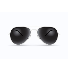 pilot sunglasses vector image