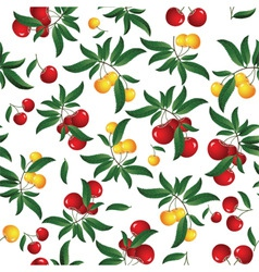 cherry seamless background vector image