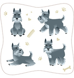Set of schnauzer pupys vector image