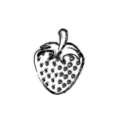 contour strawberry fruit icon stock vector image