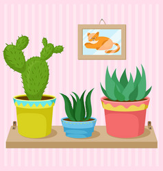 cacti and succulents in pots on the shelf vector image