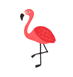 cute funny flamingo standing on one leg tropical vector image