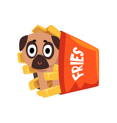 Cute pug dog sitting in a paper box of french vector