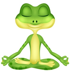 Frog cartoon doing yoga vector image