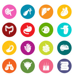 Internal human organs icons set colorful circles vector