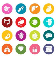 internal human organs icons set colorful circles vector image