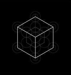 Sacred geometry metatrons cube vector