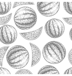 Seamless watermelon pattern Fresh fruit skech vector