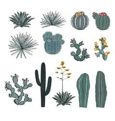 Set saguaro cactus blooming cacti prickly pear vector