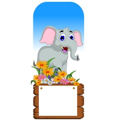 Cute elephant cartoon with blank board vector image vector image