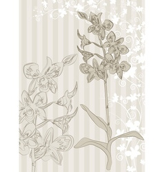 Hand Drawn Orchid Sketch Background vector image