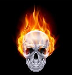 Chrome metal fair skull 01 vector image