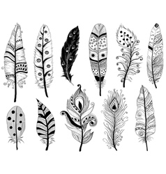 Hand Drawn Doodles of Ethnic feathers vector image