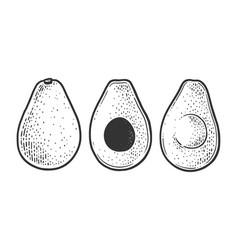 Avocado berry vegetable sketch vector