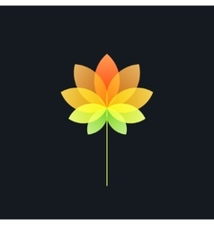 Bright colorful translucent flower on black vector