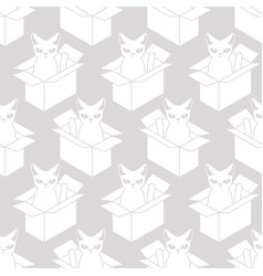 cat in box white texture pet in cardboard box vector image