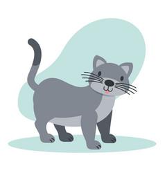 cat pet animal vector image