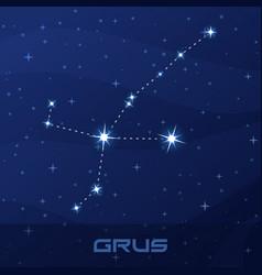 constellation grus crane night star sky vector image