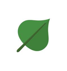 Isolated foliage flat icon hickory element vector