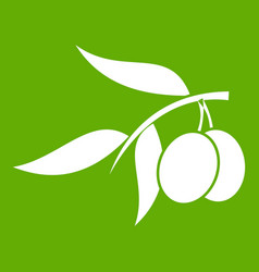 olive tree branch with two olives icon green vector image