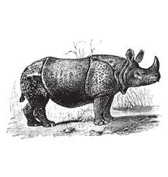 One horned rhinoceros vintage vector