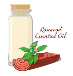 Rosewood essential oil vector