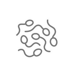 sperm cells spermatozoon line icon vector image