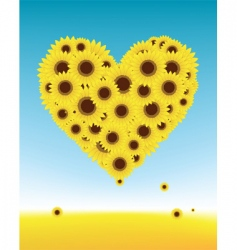sunflower heart vector image