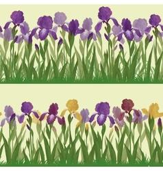 Flowers iris set seamless vector image