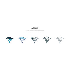 Acacia icon in different style two colored and vector
