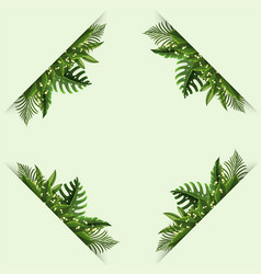 Border template with green ferns vector