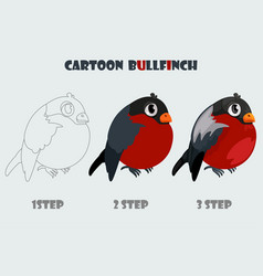 cartoon bullfinch isolated 3 step drawing vector image