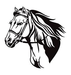 decorative horse 9 vector image