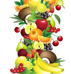 different fruits with leaves and flowers vector image