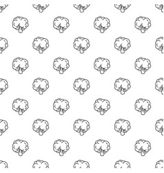 natural broccoli pattern seamless vector image
