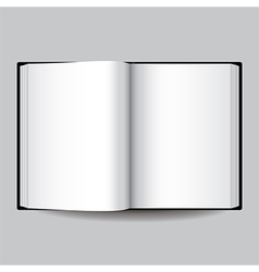 object black book vector image