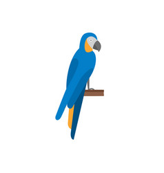 parrot flat icon vector image