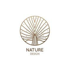 plant logo tropical leafs in circle palm leaf vector image