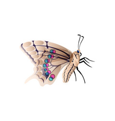 Realistic butterfly isolated on a background vector