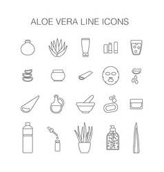 thin line icon set aloe vera plant and products vector image