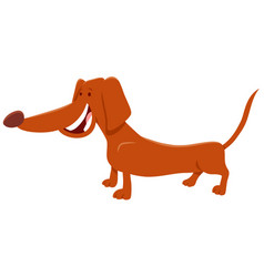 brown dachshund dog cartoon character vector image