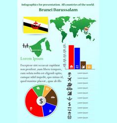 Brunei darussalam infographics for presentation vector
