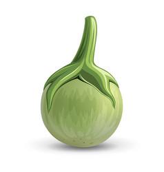 Eggplant realistic design isolated vector