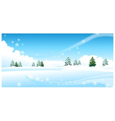 Fir trees over snow landscape vector image