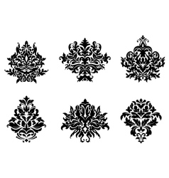 Floral and foliate design elements vector image