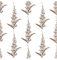 foxglove seamless pattern hand drawn graphic vector image vector image