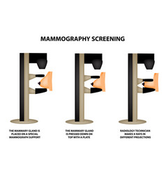 Mammography mammographic world breast cancer day vector