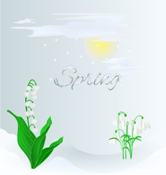 Spring lily of the valley and snowdrops vector