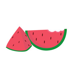watermelon icon on white background for graphic vector image