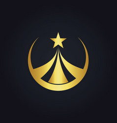 star round business gold logo vector image vector image